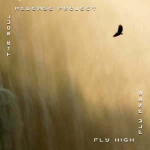 FLY HIGH FLY FREE COVER (1600X1600-1200res)